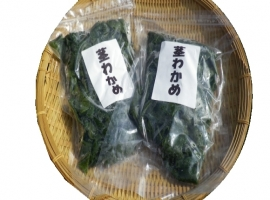 島原茎ワカメ(太茎) - SIMABARA stalk Seaweed (thick stem)